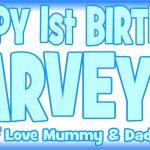 Baby Blue & Dark Blue Birthday Banner